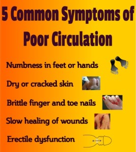 poor circulation symptoms